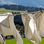 洗濯ネットに入れるかどうかは見た目で分かる、これを覚えれば洗濯が楽になる